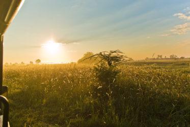 Sunrise in Savuti Balmond Safari