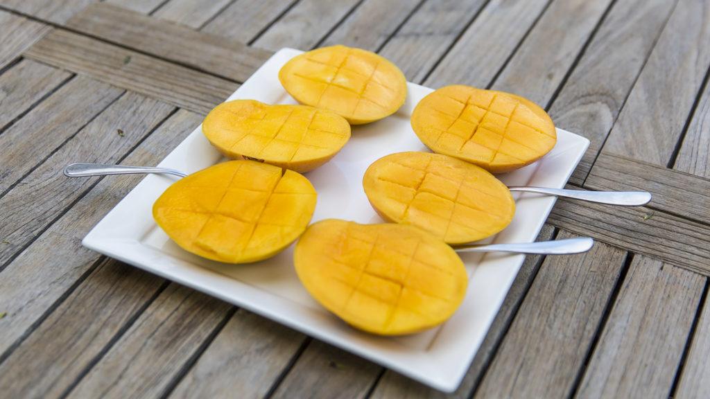 Mango_Australia dla poczatkujacych