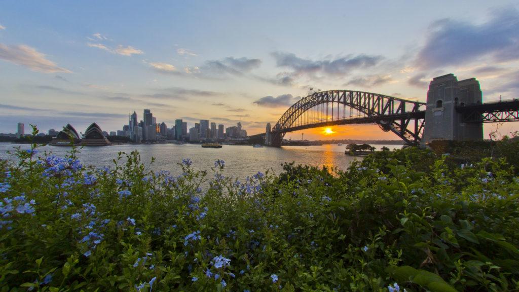 SydneyHarbourBridge Australia dla początkujących