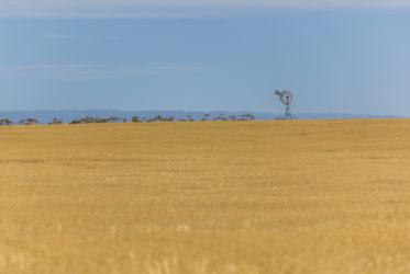 Victoria Australia Milesaway