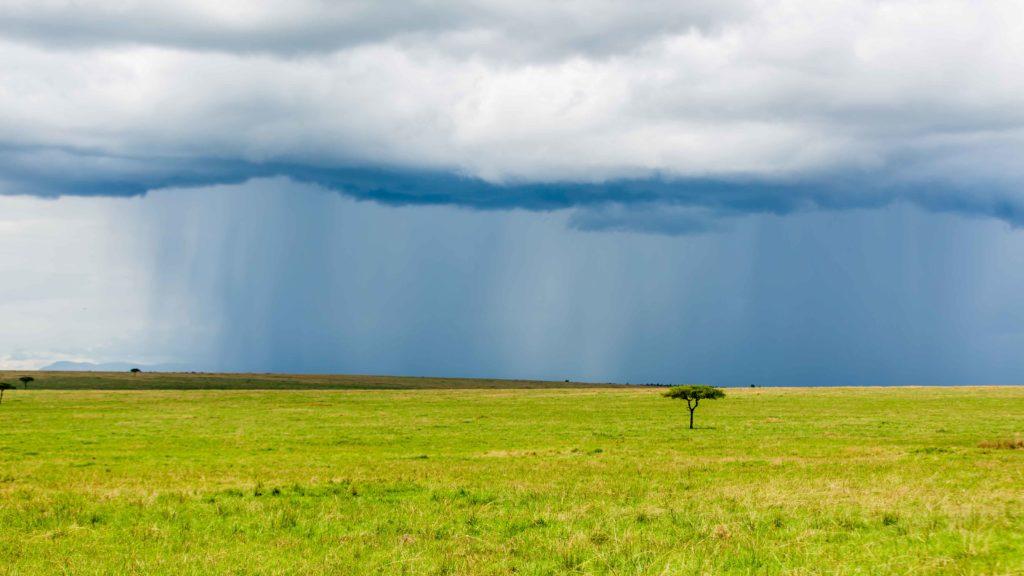 Pora deszczowa to dobry czas na dramatyczne zdęcia