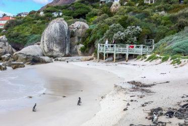 boulder beach cape town