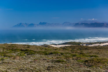 grootbos flynbos and the coast