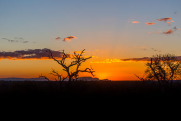 sunset mala mala RPA