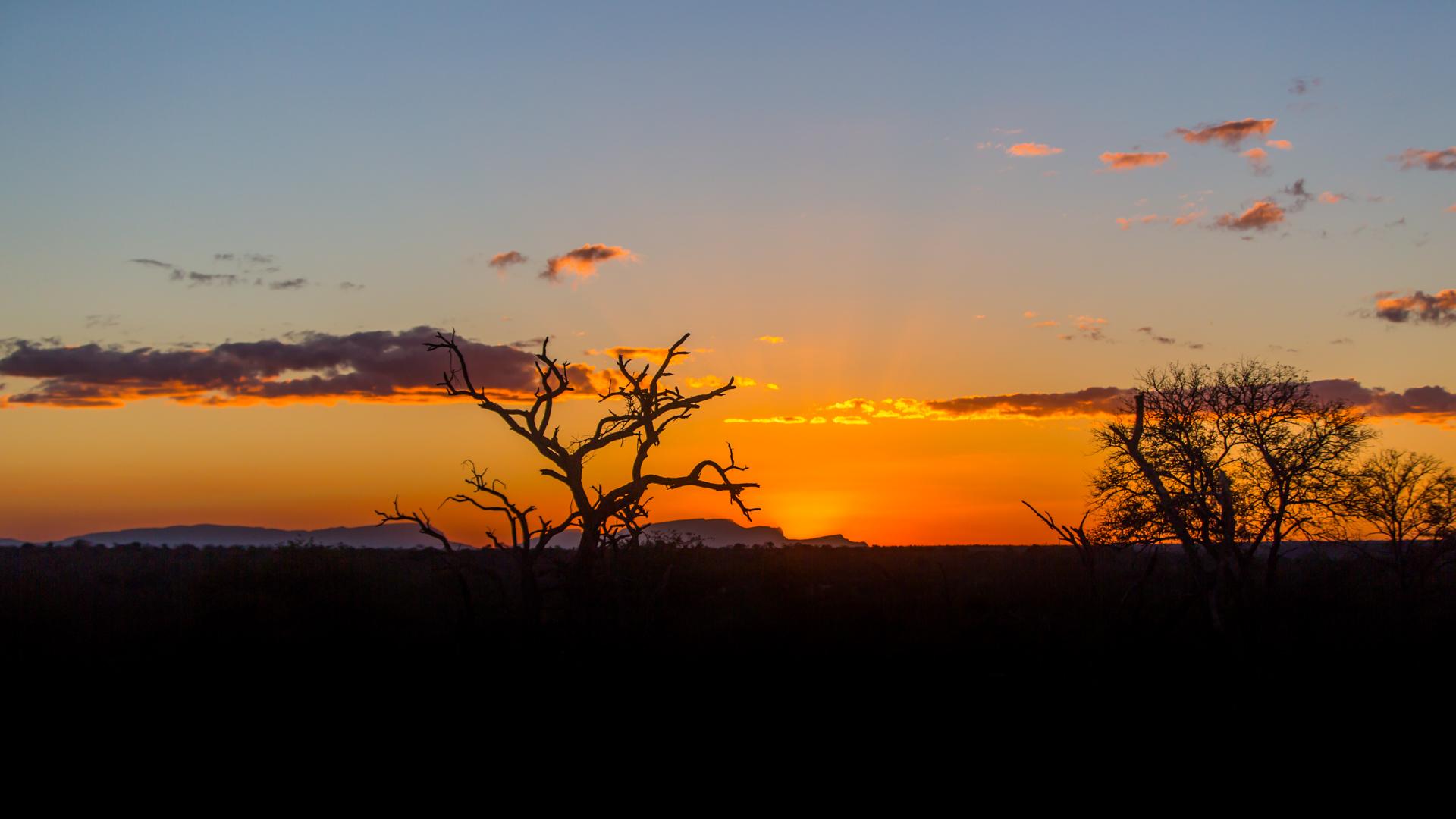 sunset mala mala