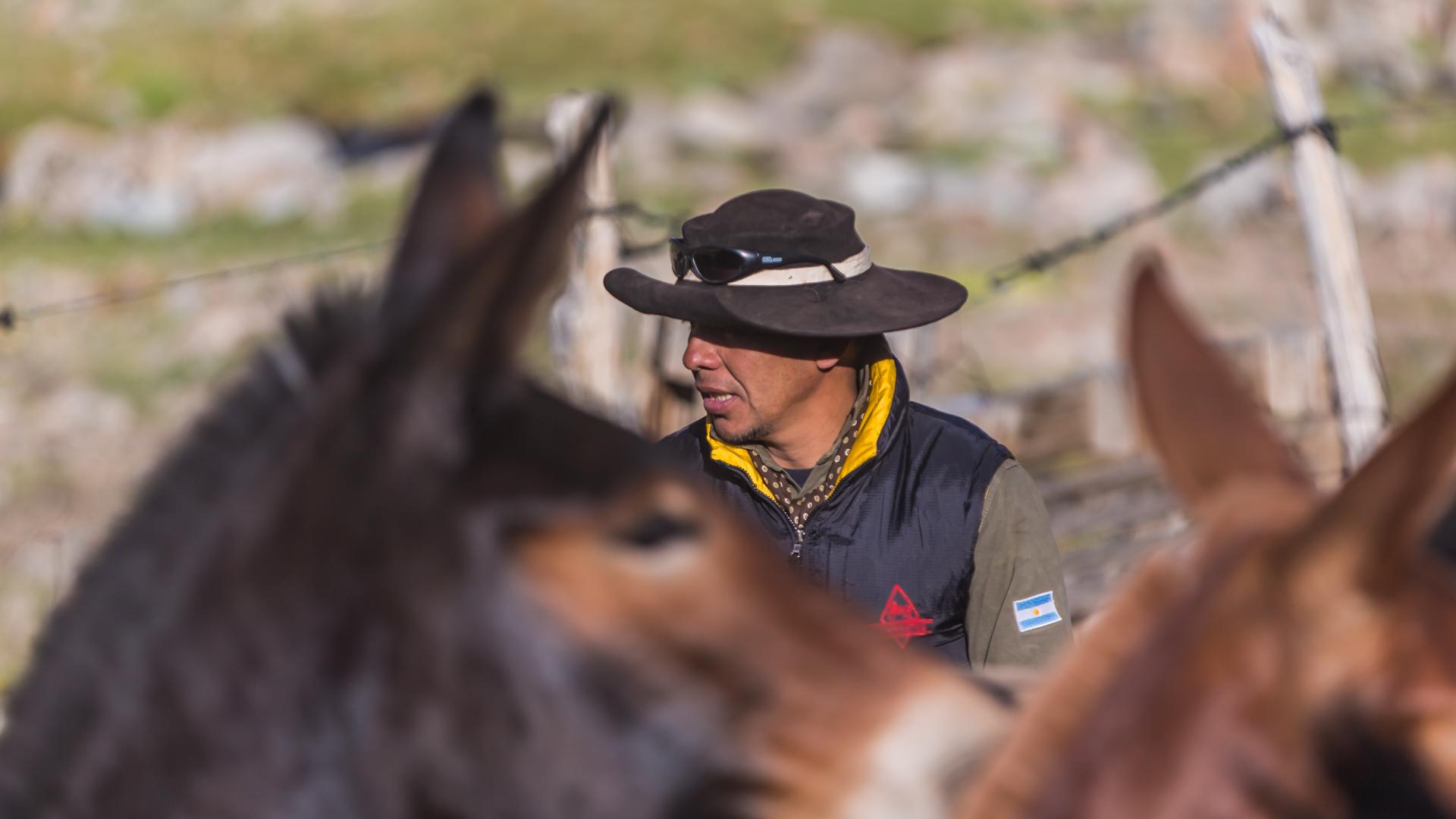 Konie i gauchos. Cabalgata2017