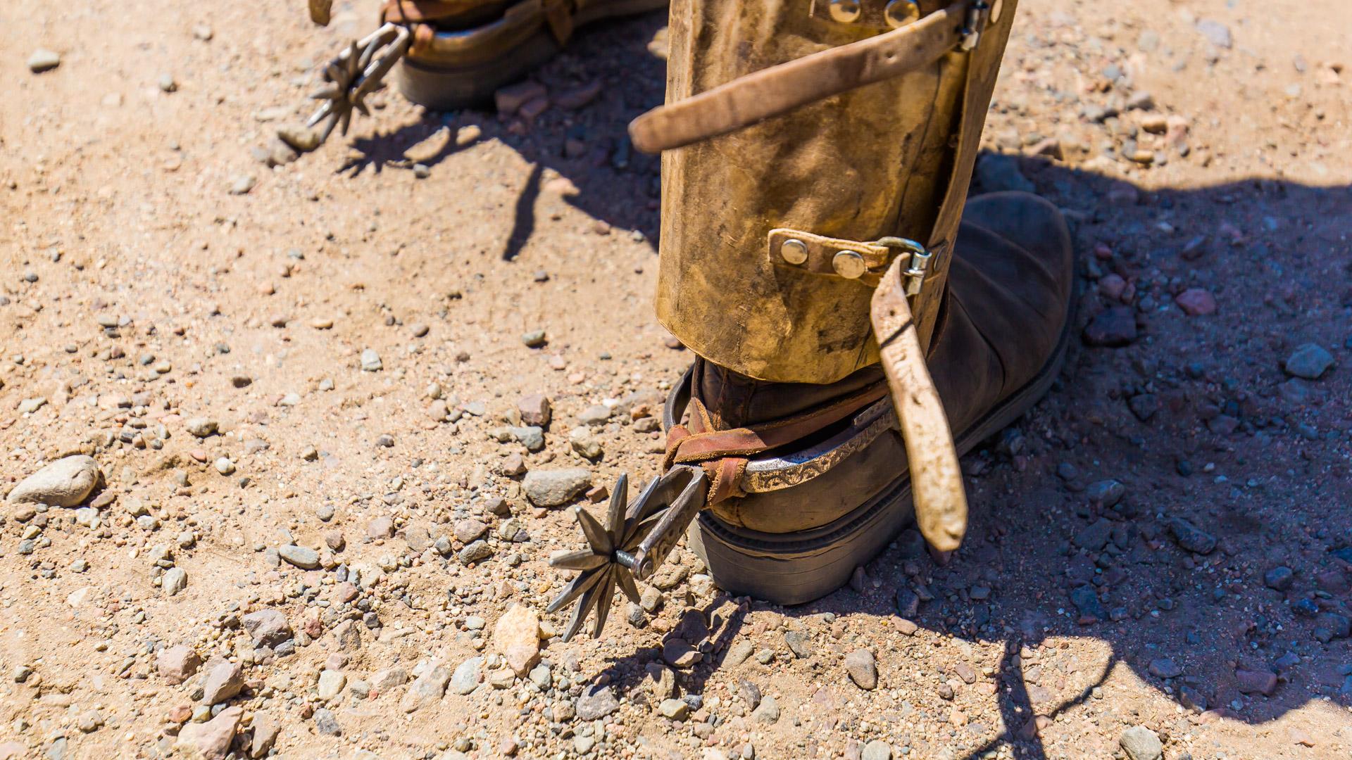 Ostrogi naszych gauchos, nie mylić z ostrygami! Cruce de los Andes