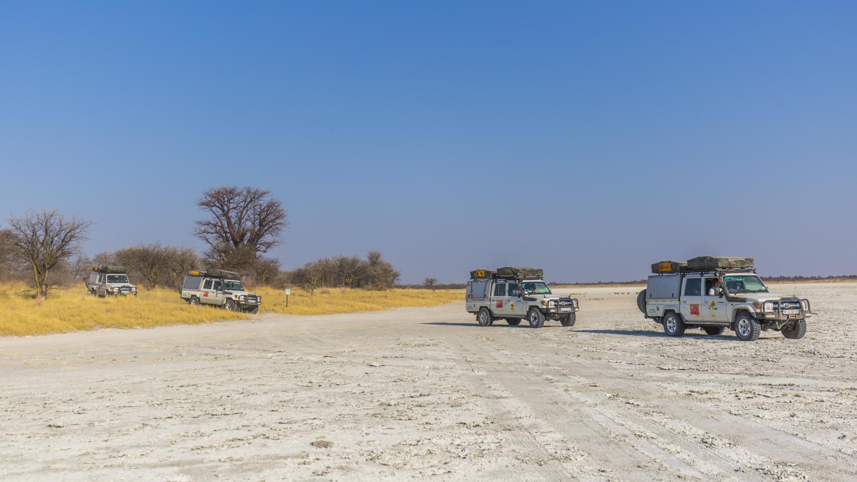 Baines Baobab Botswana