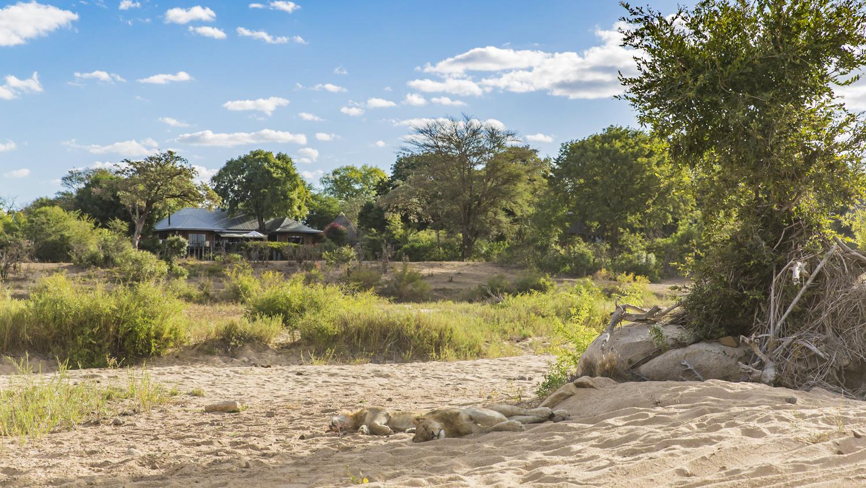 Mala Mala, Kruger National Park
