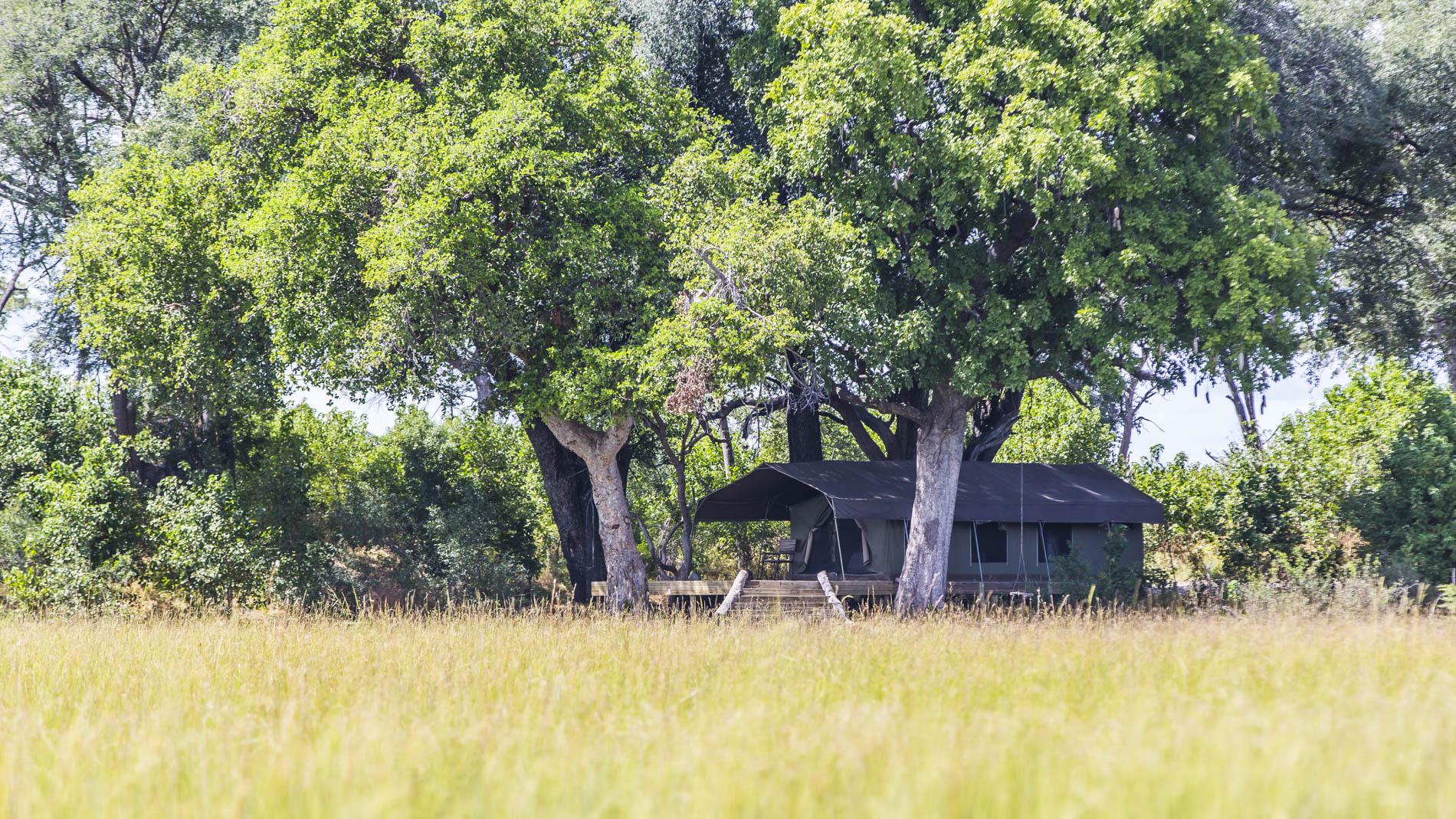 Namiot w Macatoo Camp Okavango