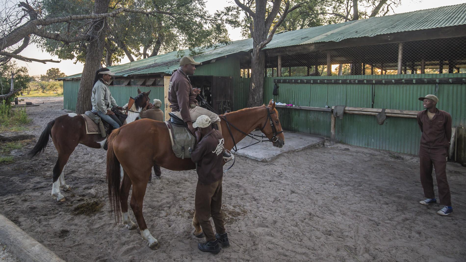 Morning ride at Macatoo Camp Okavango