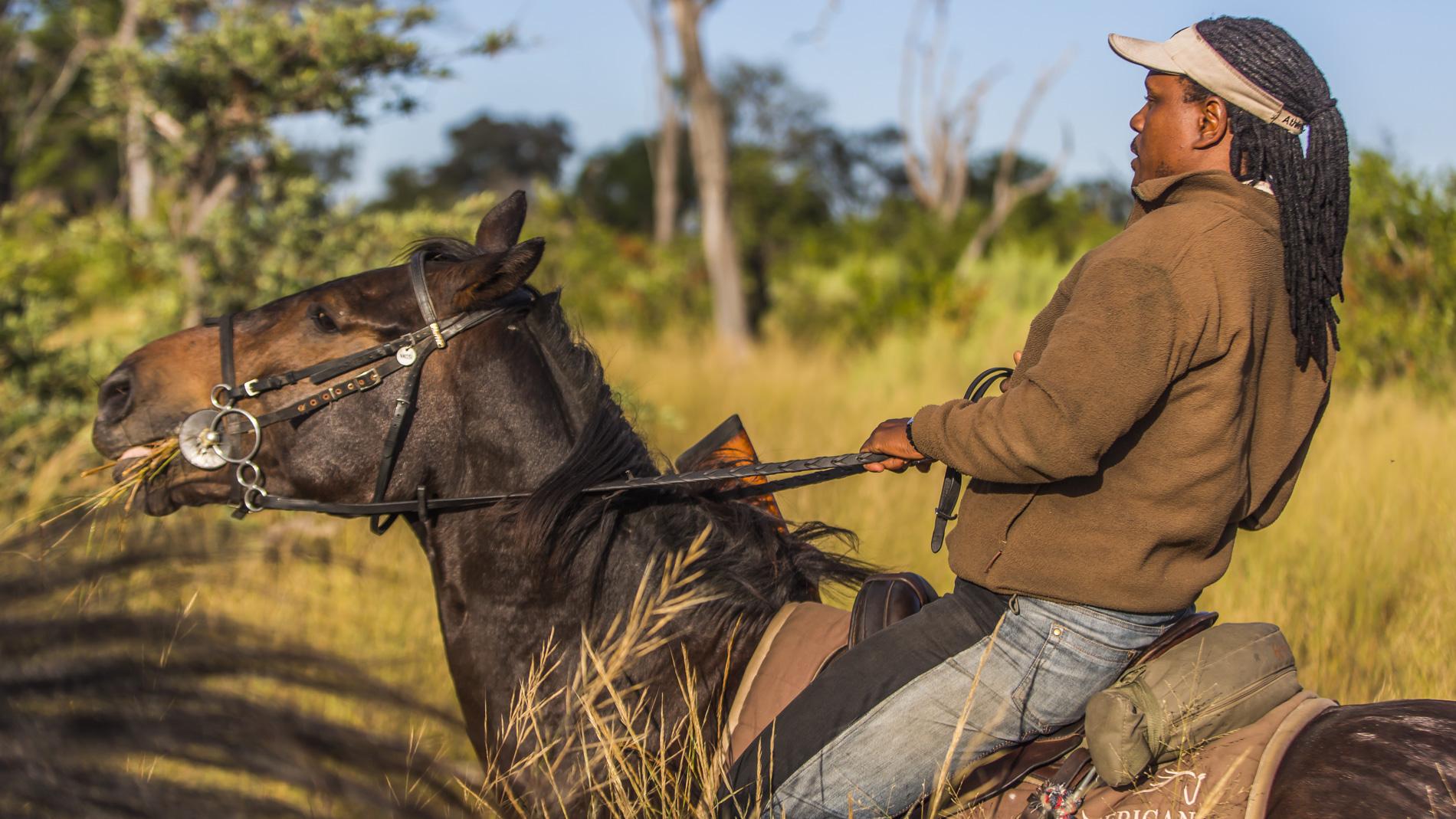 Our guide at African Horseback Safaris